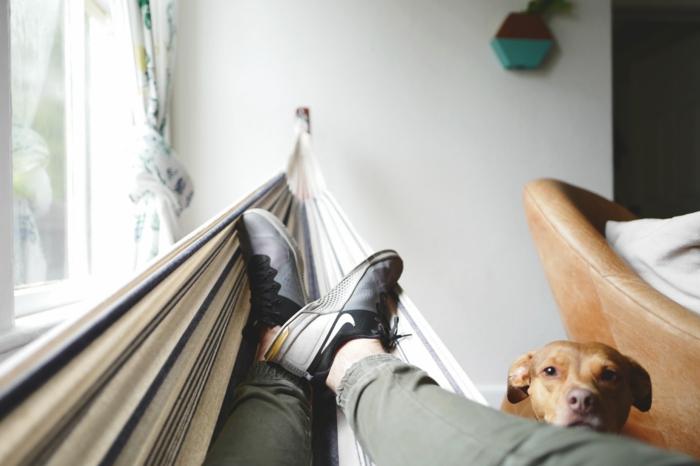 Hamac à la maison homme et son chien meilleur fond d'écran, la plus belle photo pour fond'écran stylé