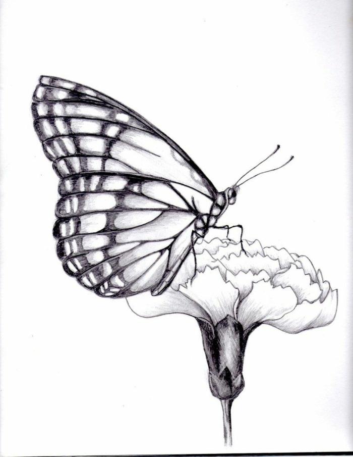 Fleur dessin de papillon, le plus facile dessin pour debutant papillon sur fleur
