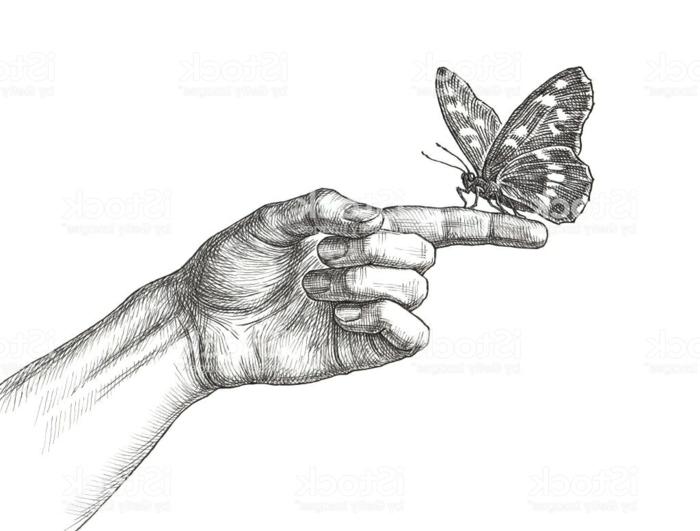Main et papillon dessin parfait pour débutant commencer a dessiner papillon sur doigt