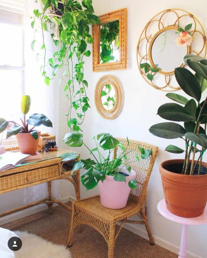 Rotin ronde cadre décoré de fleurs, plantes vertes amenagement studio 15m2 ikea, aménagement appartement simple