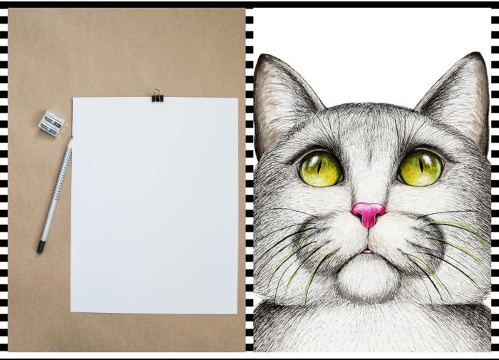 activité manuelle pour occuper son temps libre avec peu de matériel, quel matériel pour faire un dessin de chat simple