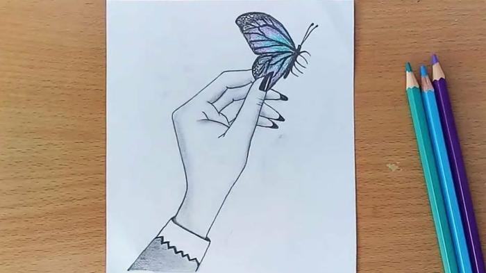 Bleu papillon sur la main coloriage papillon, dessin chouette de papillon beau couleur