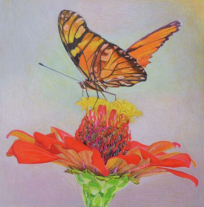 Fleur et papillon dessin coloré, papillon dessin couleur idee a dessiner cool