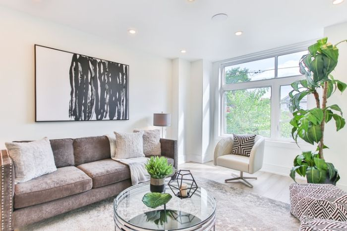 salon gris et blanc ou comment aménager un salon contemporain aux couleurs neutres et quelques plantes vertes pour fraicheur