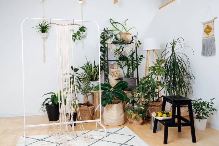 Déco hippie plantes vertes aménagement petit studio, decoration interieur appartement tendance