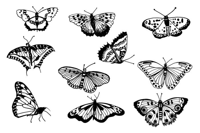 Motif a dessin papillon facile, image pour s'inspirer dessins papillons differentes motifs