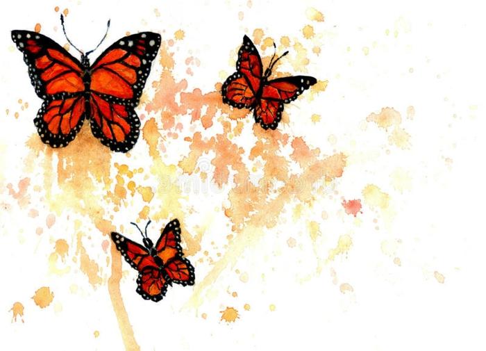 Monarch papillon dessin mignon, les plus beaux papillons, dessin noir et blanc cool et coloré apres