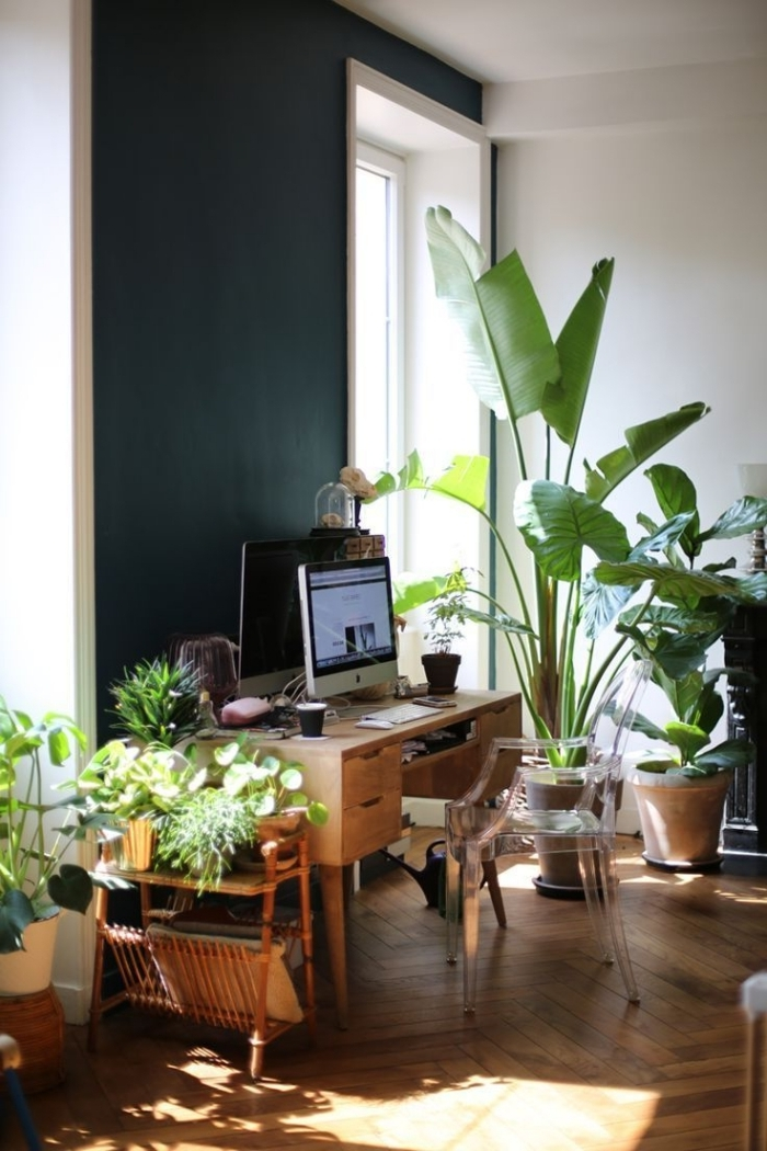 design bureau à maison de style urbain jungle avec plantes vertes et plantes grasses d'intérieur, déco petit bureau dans le salon
