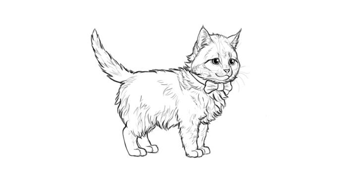idée pour réaliser un dessin de petit chat mignon avec papillon, exemple de chat dessin facile au crayon