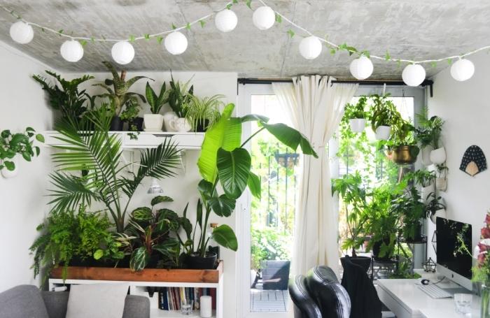 comment bien décorer un appartement de style urbain jungle, décoration espace de travail avec plante grasse retombante