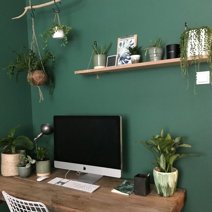 quelle peinture tendance pour un salon vert, idée de plante grasse retombante pour décorer son coin de travail maison