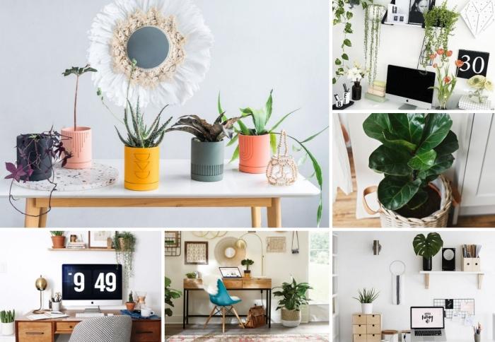 quelle plante pour bureau choisir pour son home office, décoration bureau à domicile avec meubles en bois et verdure