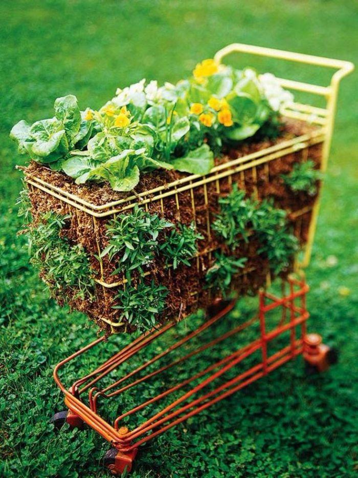 recyclage de caddie pour faire un potager original soi meme, comment aménager son jardin creatif