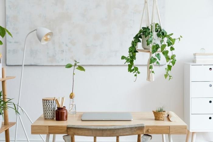 quelle plante verte intérieur pour décorer son bureau à domicile, design espace de travail de style bohème chic avec meubles en bois