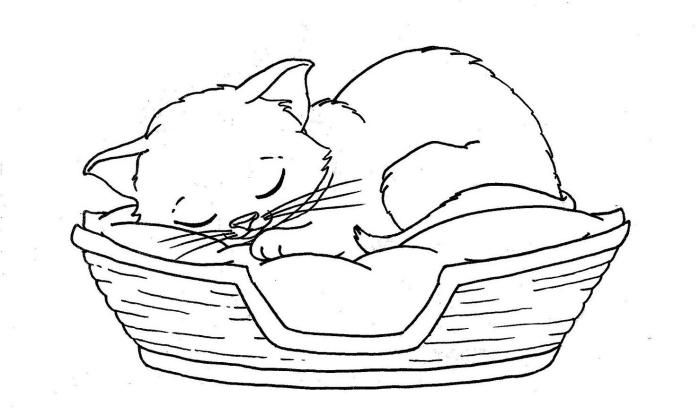 idée comment faire un joli dessin facile chat, modèle de dessin en blanc et noir avec chat endormi sur un lit en panier tressé