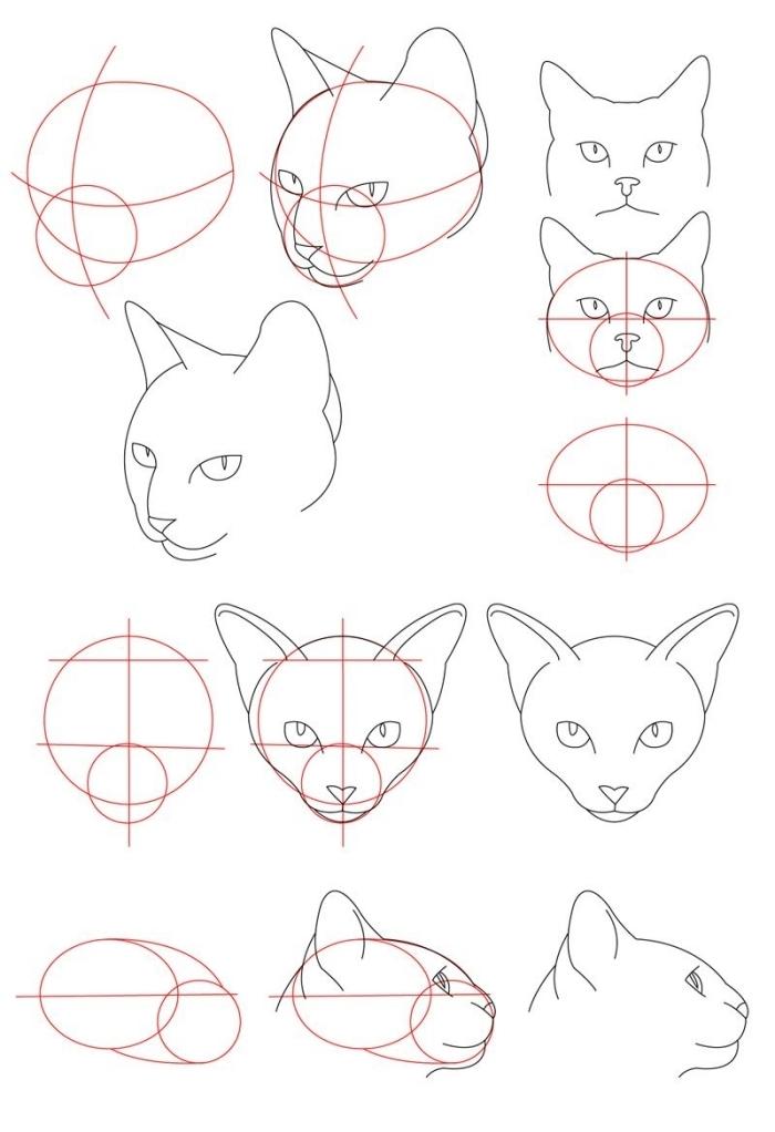 tutoriel pour apprendre à faire un dessin de tête de chat sans fourrure, idée de dessin de chat facile pour débutants