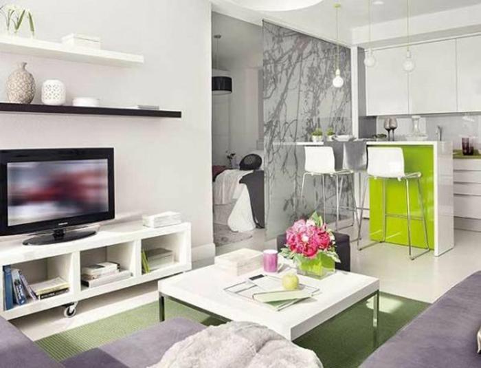 Cuisine endroit vert cool ouverte au salon aménagement studio 20m2, aménagement studio boheme chic deco