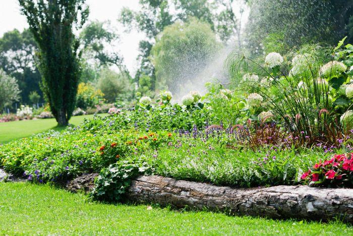 bordure de jardin bois en tronc d arbre recyclé pour border une parterre de fleurs et creer une separation gazon