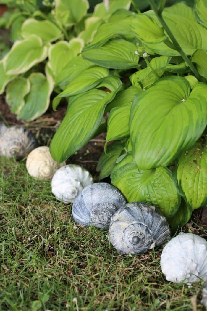 coquilles de mere recyclés du bord du mer pour fabriquer une bordure allée originale et creative