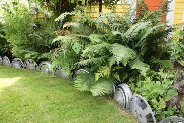 jante de roue de voiture recyclée pour créer une bordure pelouse originale avec matériaux recyclés