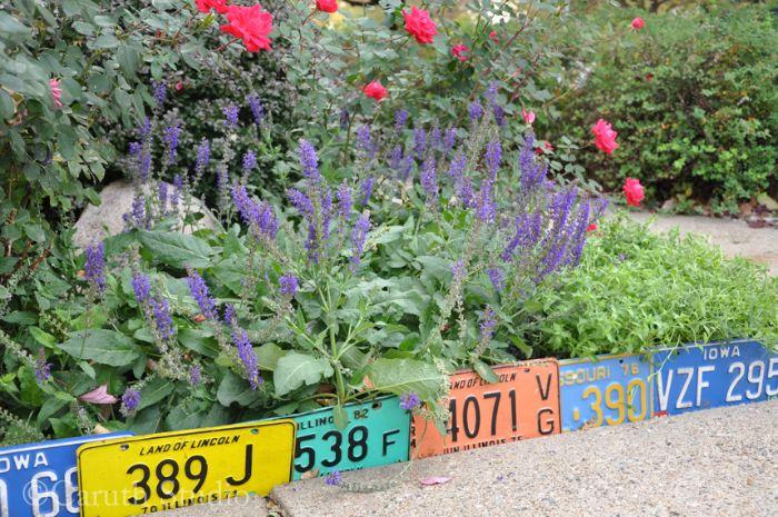 recyclage plaques d immatriculation colorées pur créer une bordure jardin creatif et separer une parterre de fleurs