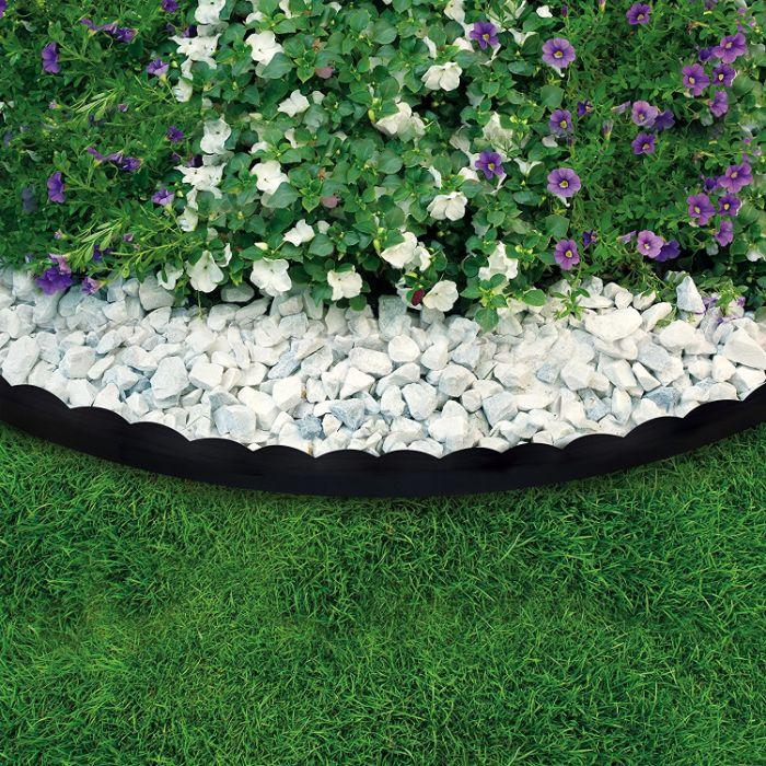 bordure allée de jardin en galets blancs avec parterre de fleurs pétunias en blanc et violet