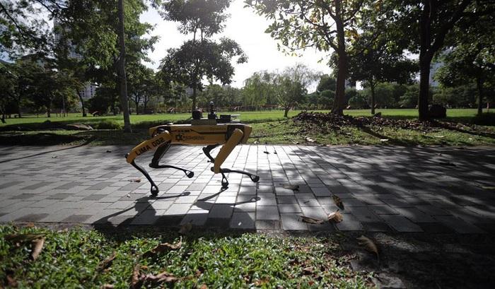 Singapour charge le robot Spot de faire respecter les régles de distanciation sociale relatives au coronavirus dans un de ses parcs