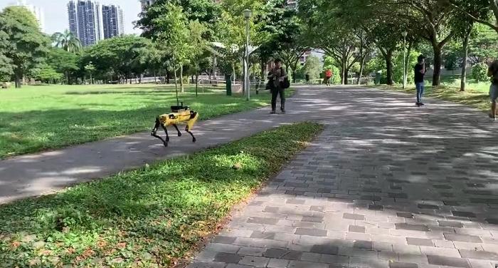 Le robot Spot de Boston Dynamics rappelle aux promeneurs de respecter une distance de sécurité pour limiter la propagation du covid 19