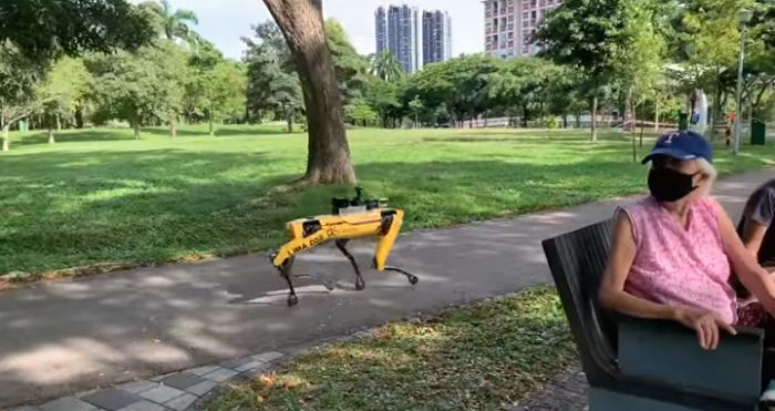 Covid-19, un robot chien utilisé pour faire respecter la distanciation sociale dans un parc de Singapour
