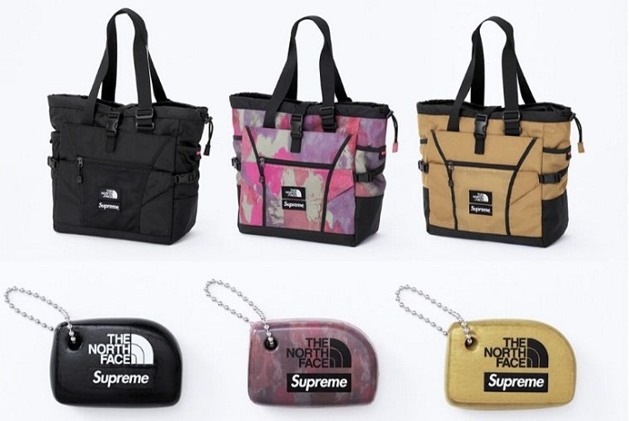 Découvrez le porte-clé et le sac the north face supreme de la nouvelle collection 2020 Drop 2 printemps 2020 ss20