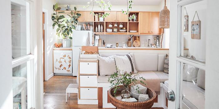 Aménagement petit maison cuisine qui donne au salon style scandinave couleur de peinture pour cuisine, la meilleure idée peinture cuisine plantes vertes