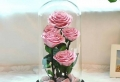 Offrir une rose éternelle en geste d'amour inconditionnel – tout savoir sur cette magnifique idée de cadeau pour femme