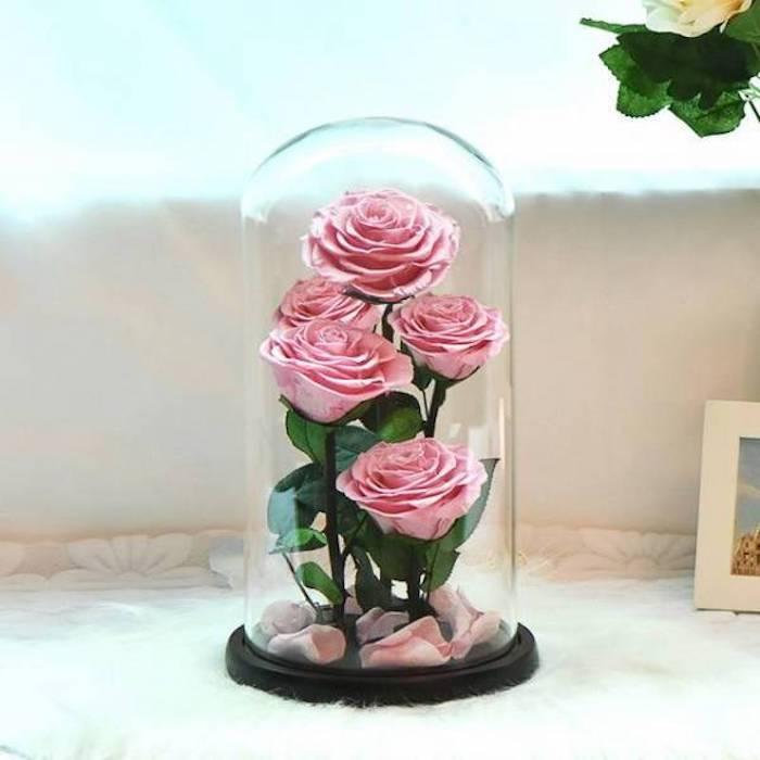 bouquet de roses sous cloche avec des pétales roses, idee cadeau rose eternelles sous cloche