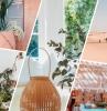 cactus terracotta couleur tendance intérieur peinture 2020 lampe bambou palmier d intérieur canapé vert miroir meubles bois