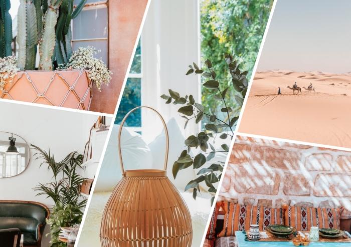 cactus terracotta couleur tendance intérieur peinture 2020 lampe bambou palmier d intérieur canapé vert miroir meubles bois déco été