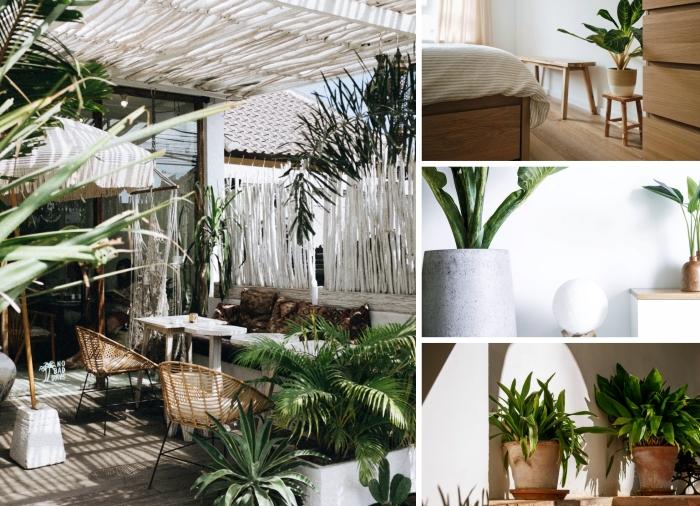 décoration avec plante verte d intérieur design chambre à coucher minimaliste meubles bois pot fleur terre cuite chaise rotin jardin