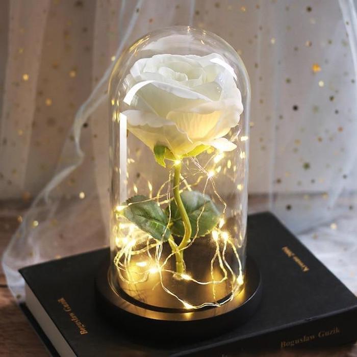 rose eternelle blanche sous cloche avec guirlande lumineuse led, idee cadeau fete des meres original