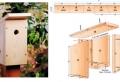 Fabriquer un nichoir à oiseaux : 60 tutos et idées créatives à piquer illico