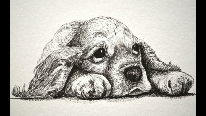 Chien triste dessin triste facile, apprendre à dessiner la tristesse sans larmes petit chien adorable