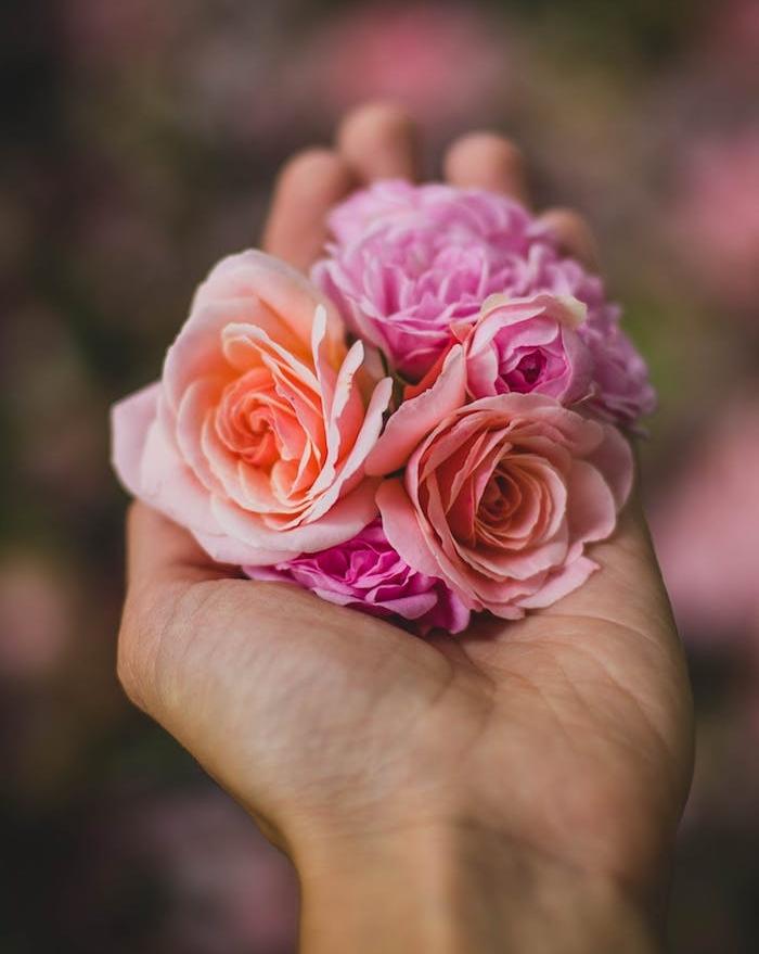 bouquet de roses dans une poignée, idée quel cadeau offrir pour la saint valentin, rose éternelle sous cloche à offrir