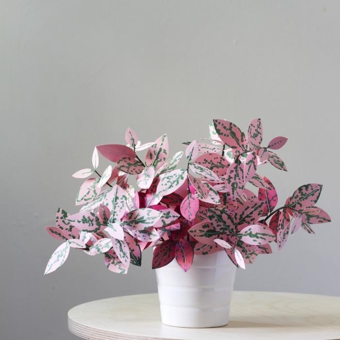 activité manuelle adulte, comment faire une plante d'intérieure originale avec papier scrapbooking et marqueur permanent en vert