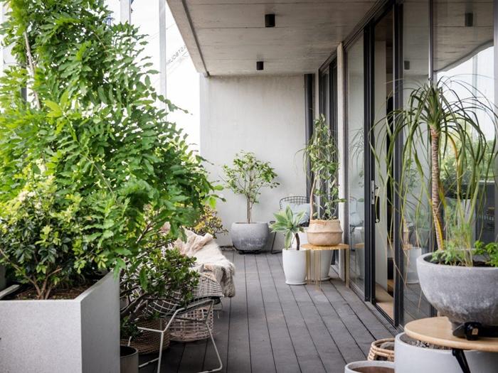 brise vue feuillage décoration extérieure balcon terrasse en bois cache pot tressé palmier pot fleur béton plaid porte coulissante