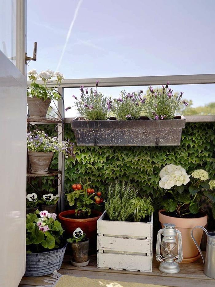 brise vue pour balcon décoration extérieure pour appartement petit balcon terrasse urbaine mur végétal plantes grimpantes