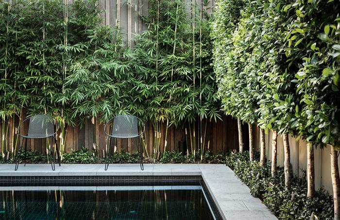 cloture brise vue design extérieur style moderne aménagement cour arrière piscine chaise métal mur bois plantes grimpantes végétation