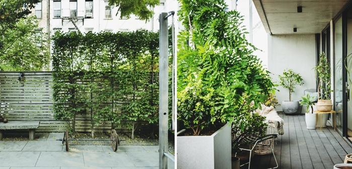 comment installer mur privatif intimite dans le jardin ou sur le balcon plantes cache vis a vis plantes grimpantes