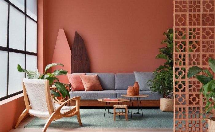 couleur de peinture pour salon moderne chaise bois plantes vertes d intérieur canapé gris table double plateau basse bois coussins couleur rose