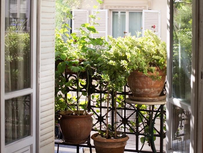 déco petit balcon avec gros pots de fleurs terre cuite plantes terrasse idée brise vue balcon avec plantes fleuries bacs fleurs