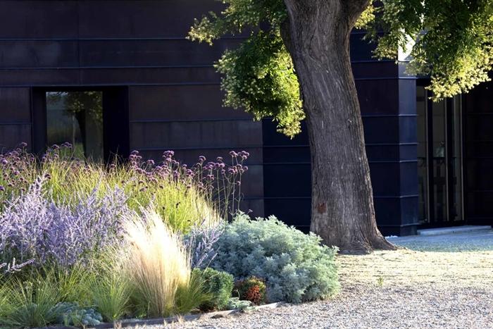 décoration jardin façade maison moderne architecture jardinage arbuste pour haie plantes extérieur arbres végétation mur brise vue