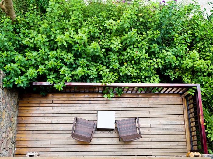 décoration terrasse en bois design extérieur meubles en bois haie de jardin cache vue vis à vis mur végétal arbustes arbres