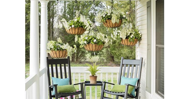 décoration véranda avec jardinière brise-vue suspendue meubles extérieur chaise bois foncé petite table café coussins turquoise